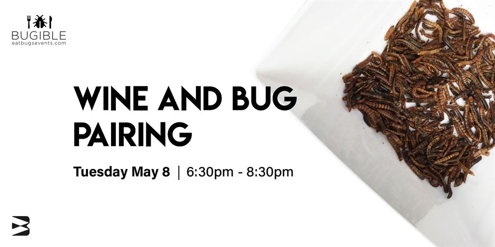 Wine And Bug Pairing With Bugible