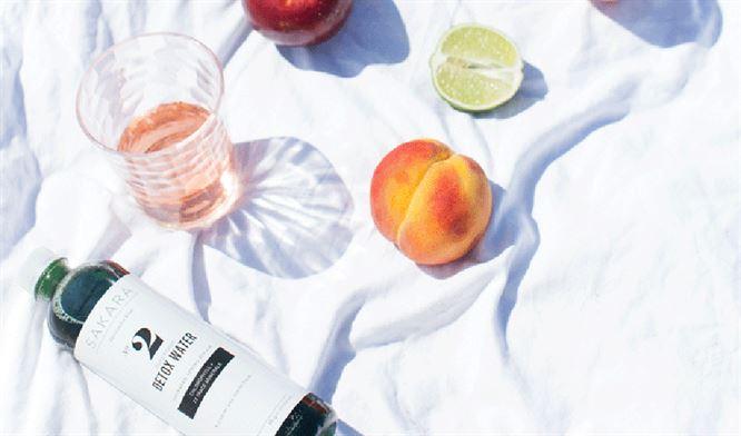 blender-benefits-thesakaralife-detoxwater_1