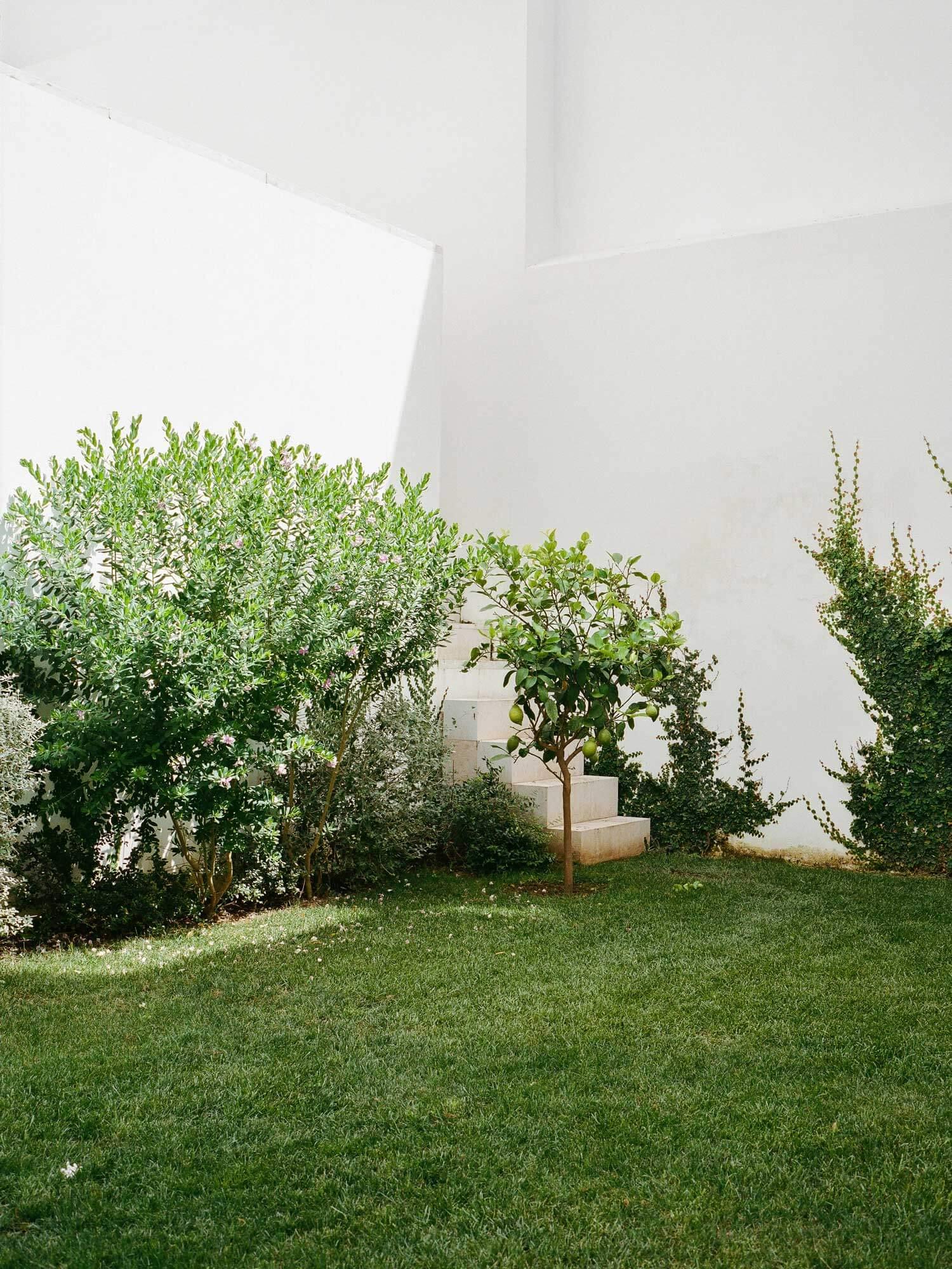 Design; Garden Space